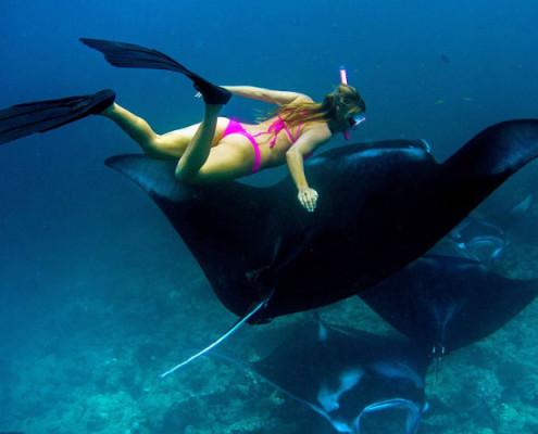 Malediwy wycieczki nurkowanie snurkolowanie