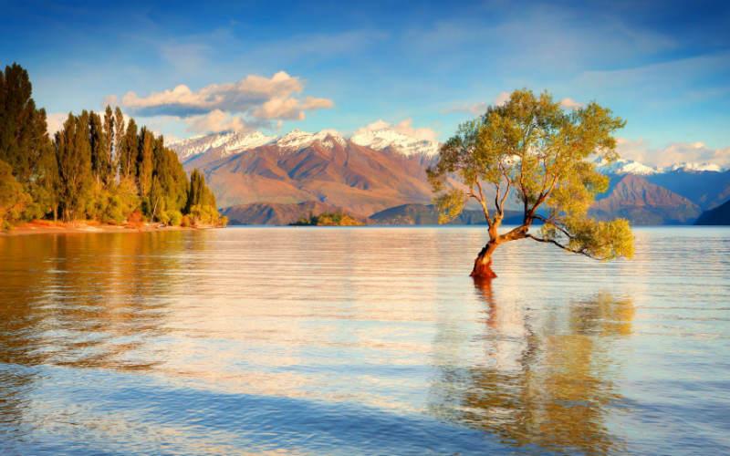 nowa zelandia wakacje