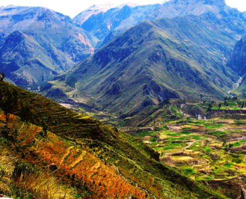 Peru wycieczka objazdowa. kanion Colca