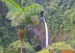 Kostaryka wycieczki