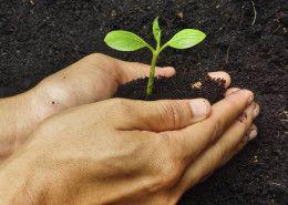 CSR dla Ziemi. Dbamy o naszą Planetę