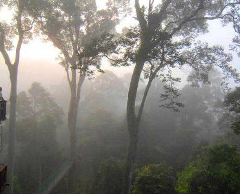 Borneo Malezja wakacje