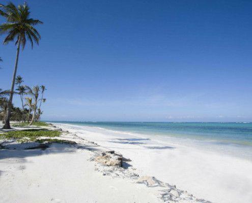 Tanzania wycieczki Zanzibar plaże