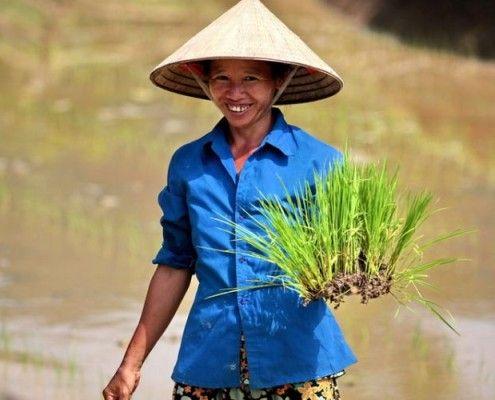 Wietnam egzotyczne wycieczki atrakcje. TOP TRAVEL Ekskluzywne wakacje Azja.