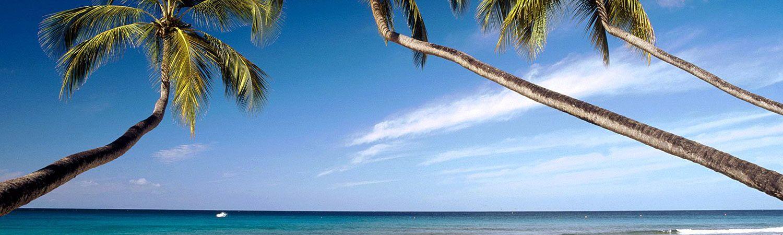 Barbados walacje - wycieczki z TOP TRAVEL