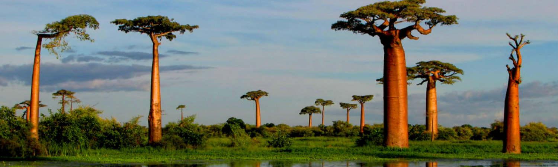 Madagaskar-wycieczki