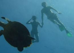 Wakacje Sri Lanka nurkowanie