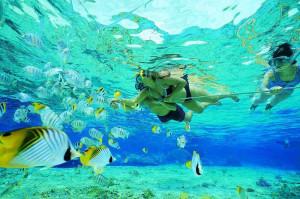 Wakacje bali wczasy snorkeling