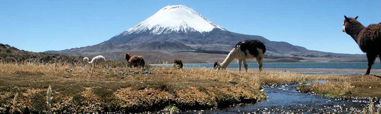 Chile wycieczka objazdowa