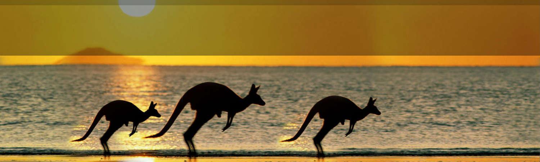 Australia-wycieczki (2)