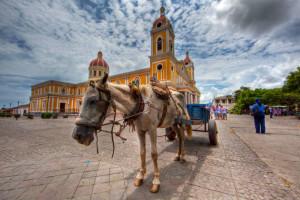 Nikaragua wycieczka objazdowa MANAGUA, GRANADA, Park Narodowy Masaya, LEON