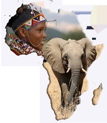 Afryka wycieczki