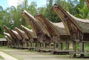 Wakacje Indonezja wycieczka Bali Sulawesi