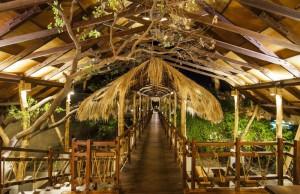 Wczasy KUCHCHAVELI Sri Lanka hotel Jungle Beach