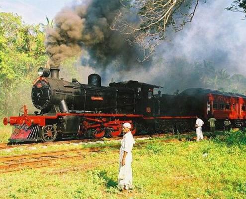 Sri Lanka wycieczki egzotyczne z TOP TRAVEL
