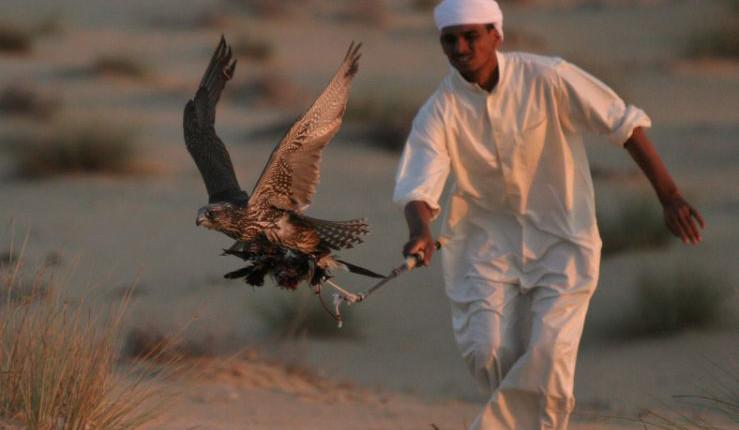 Emiraty Arabskie wycieczki pustynia