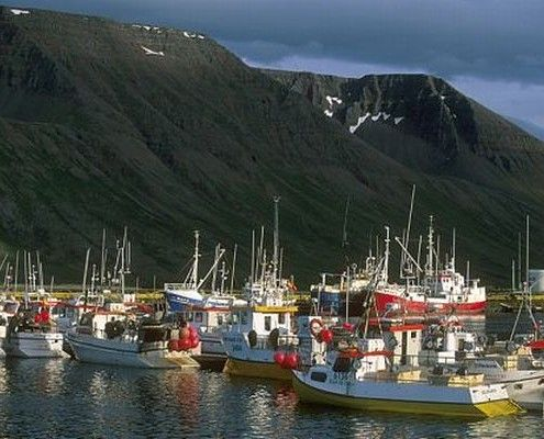 Islandia wycieczki indywidualne