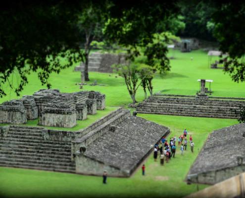 Honduras Copan i Finca el Cisne