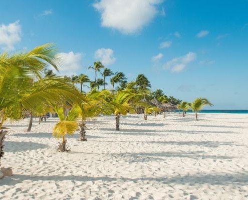 Aruba wycieczki