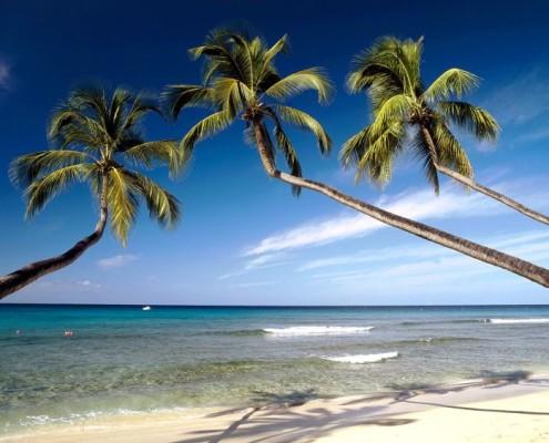 Wakacje Barbados wycieczki