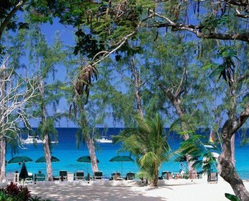 Wakacje Barbados wyjazdy
