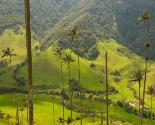 Kolumbia wycieczki wakacje