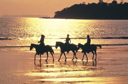 Kostaryka atrakcje jazda konna