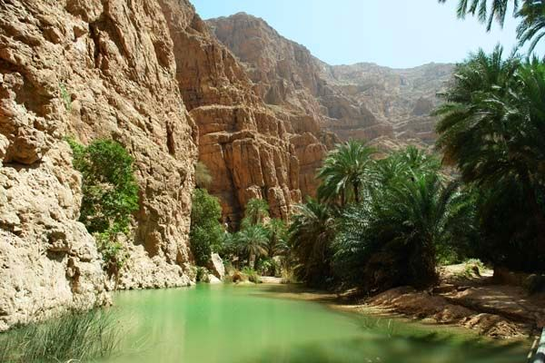 Oman atrakcje Wadi dolina oaza